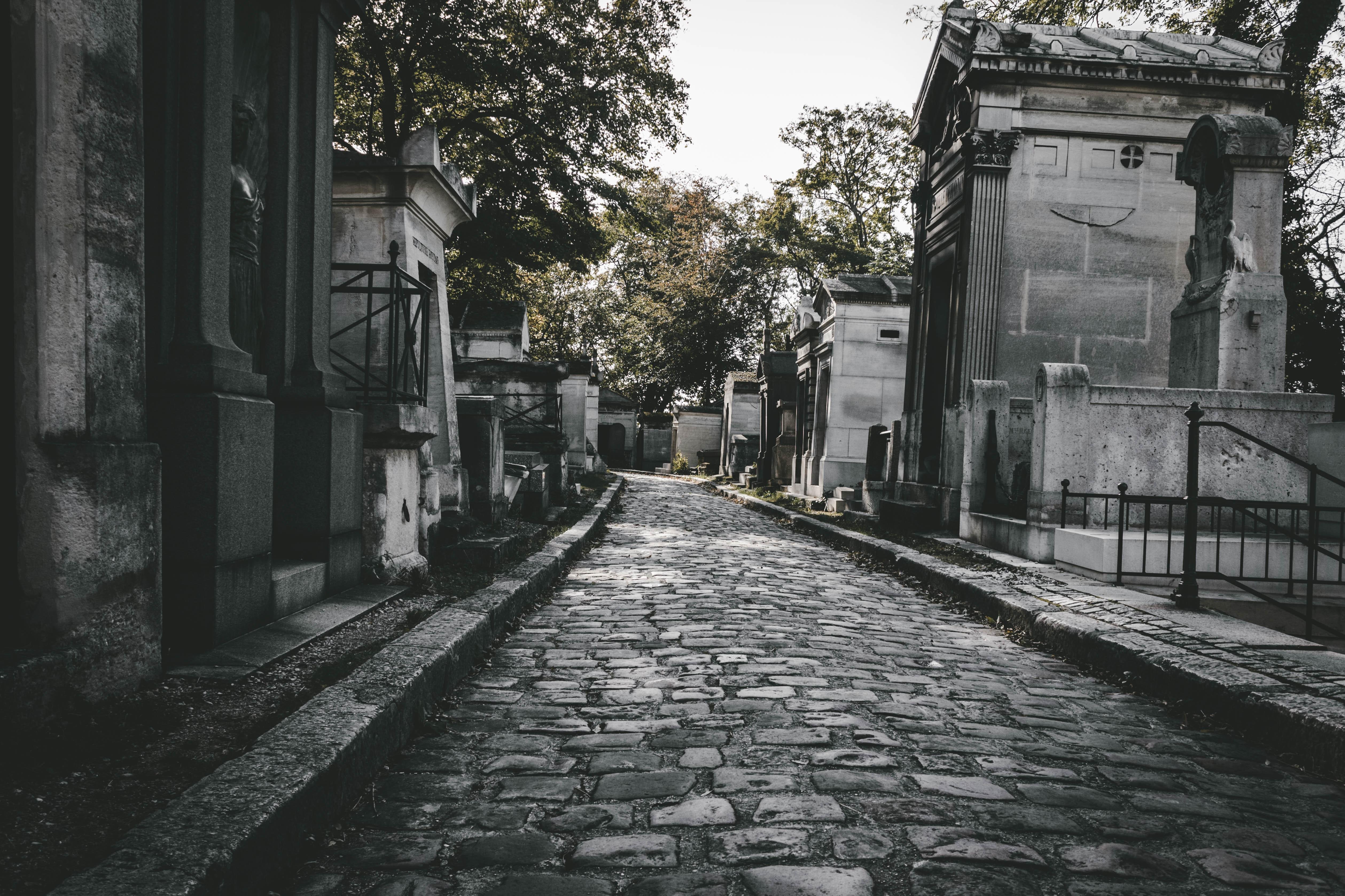 Okolicznościowy kiermasz handlowy przed cmentarzem Junikowo